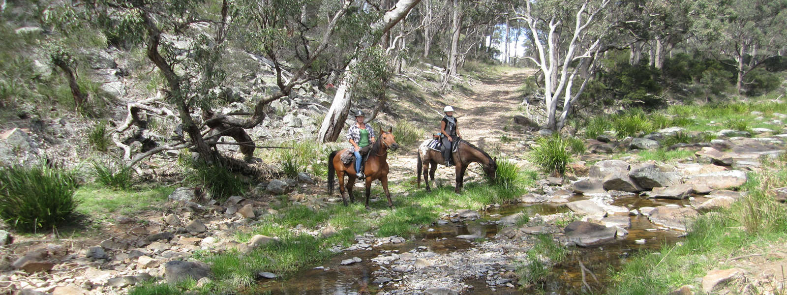 Riders at Three Waters Holidays